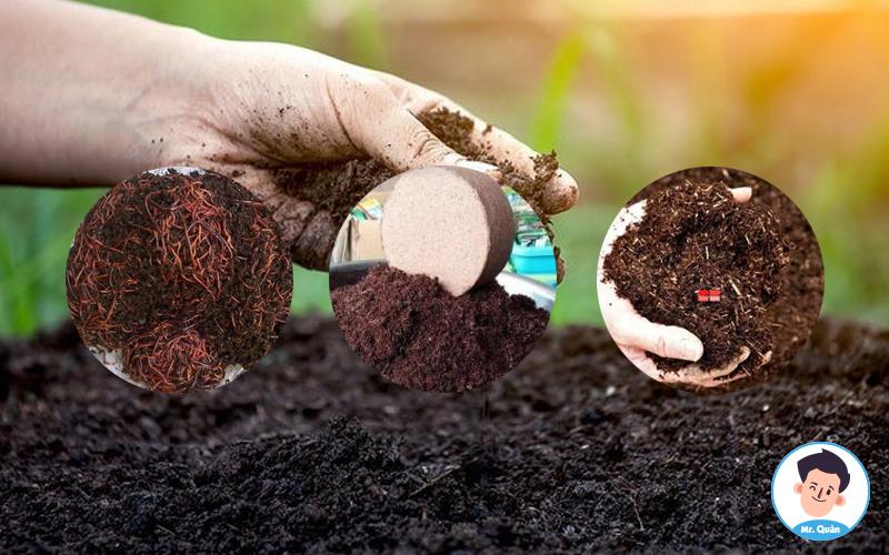 Cách làm đất trồng rau