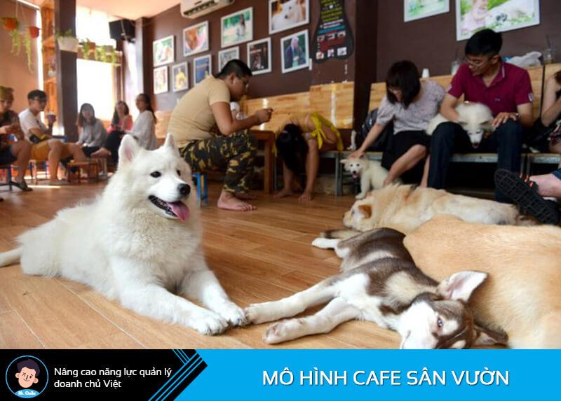 Quán cafe thú cưng
